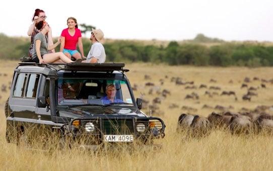 Kenya safari packages, Maasai Mara tours